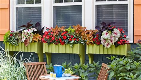 lowes window box window box planters lowes