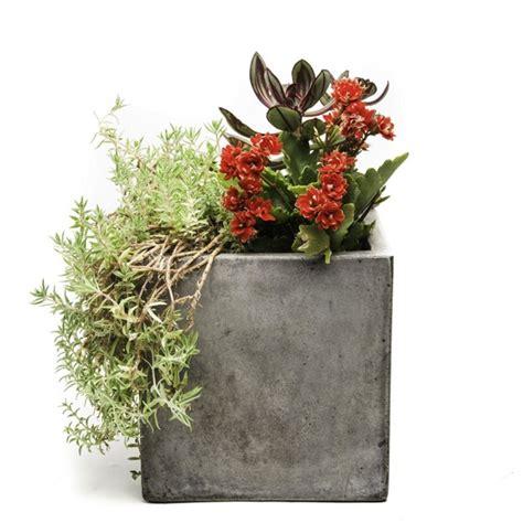 cast planters garden decor cast concrete planters a gardener s notebook