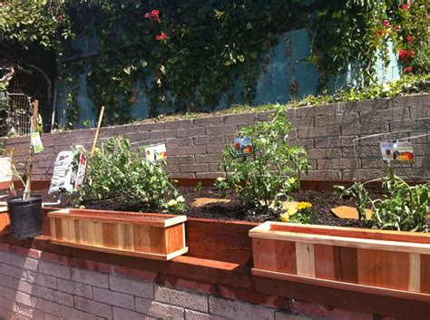 Raised Garden Bed Design Ideas When Vision Comes To Your Backyard Garden Eats
