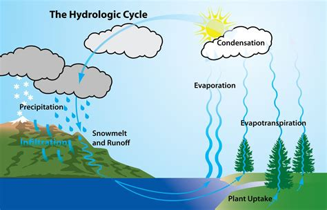 water cycle diagram with explanation water cycle diagram goosegeogblog