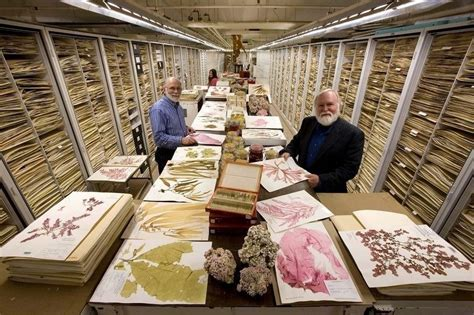 Smithsonian S Secret Storage Room Has Thousands Of Drawers