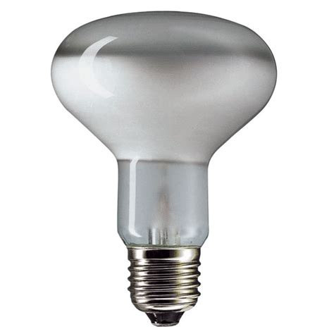 Led Light Bulb Wiki Sylvania Light Bulbs Wiki Amazing Flood Light Wiki 33 On Marine Flood Lights 1000w With Flood