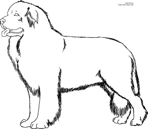 Dogs Coloring Pages To Print by Coloring Pages Of Dogs And Puppies Coloring Pages To