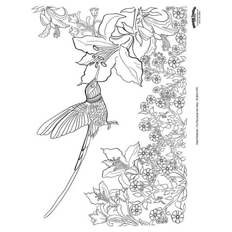coloring pages for adults hummingbird hummingbird adult coloring page free printable