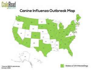us map with states only canine influenza