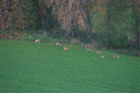 can wardens trespass hunters landowners must heed trespass wisconsin