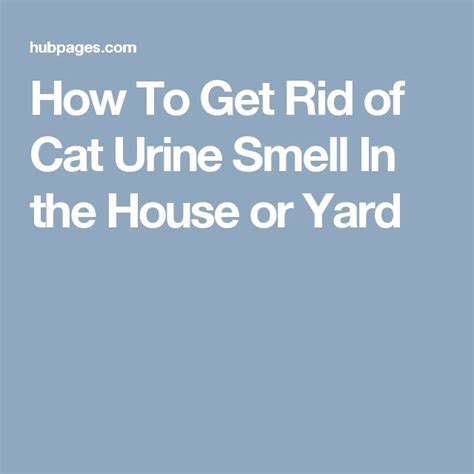 how to get rid of cats in backyard 17 best images about tips on pinterest stains pets and