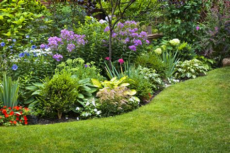 plant beds 8 exterior home improvements under 500