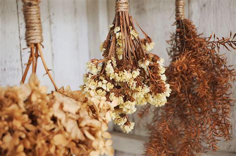 dry flowers  laundry borax