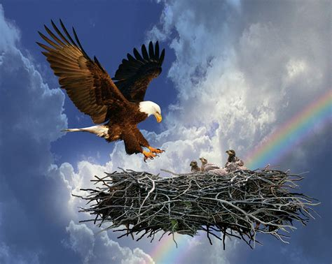 eagle rock church
