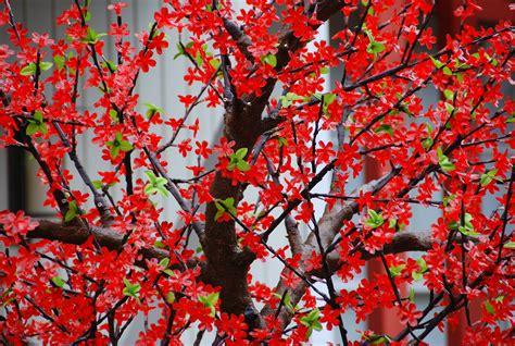 gambar kreatif cahaya abstrak ungu daun bunga warna biru gambar daun bunga pola warna gambar pohon bermain daun