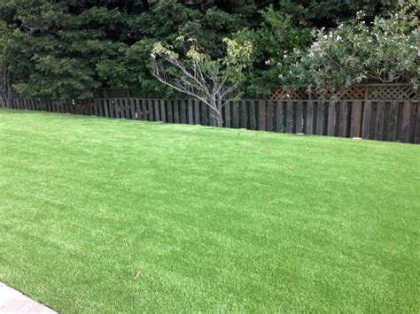 backyard grass cost artificial grass installation sedona arizona gardeners