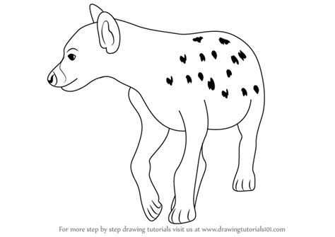 baby hyena coloring pages step by step how to draw a hyena drawingtutorials101 com