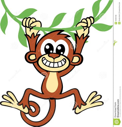 cartoon monkey swinging on a vine monkey royalty free stock photos image 18484168
