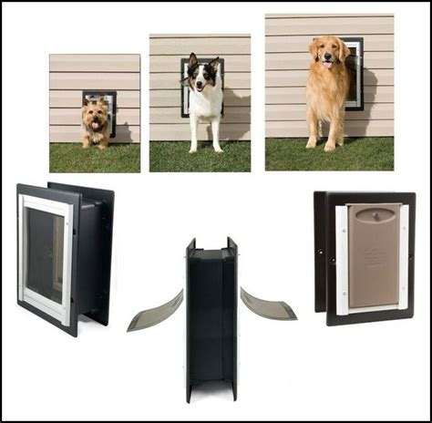 Electronic Doors For Large Dogs by Large Door Electronic Pet Photos Gallery Ol20nzqbon