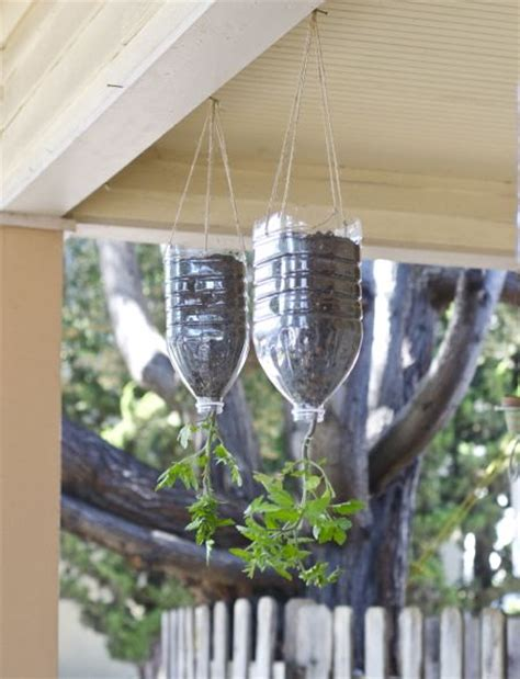 Diy Hanging Tomato Planter by 19 Best Images About Tomatoes On Recycling Tomato Cages And Bird Baths