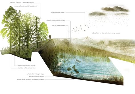 1 section of land landscape architecture penndesign