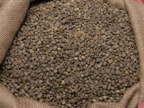 Green Bean Flores Bajawa Arabica green coffee beans home roast coffee