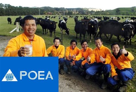 new zealand job list of poea approved agency for deployment in new zealand