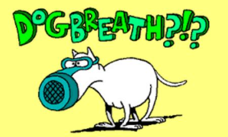 why do puppies puppy breath breath cure find out all the answers at do dogs teeth fall out