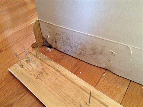 can smoke in carpet make you sick i m thinking of purchasing a home should i be concerned