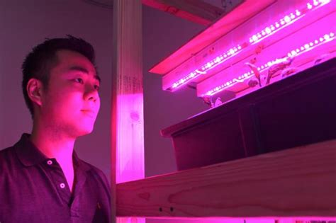 Depaul Mba Contact by Depaul Student Hunts The Right Hydro Lights Lincoln Park