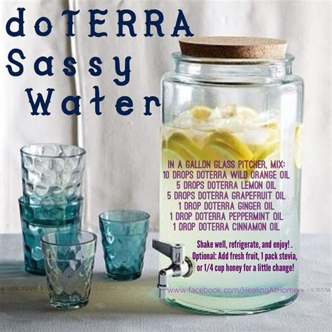 Sassy Water Detox Reviews by Best 25 Sassy Water Ideas On Doterra Detox