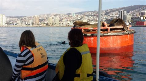 boat tour valparaiso students recap life changing chile sustainability course