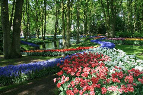 flower garden netherlands keukenhof