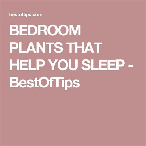 Bedroom Plants To Help Sleep 1000 Ideas About Bedroom Plants On Living