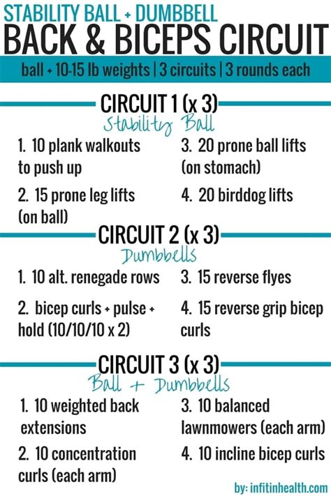 stability dumbbell back biceps circuit workout