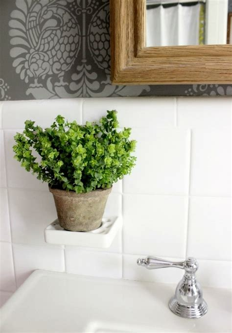 best plants for bathrooms 20 indoor plants for the bathroom