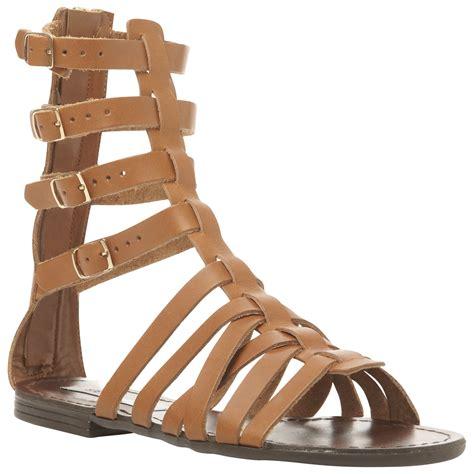 brown steve madden sandals steve madden ceaserr gladiator sandals in brown cognac