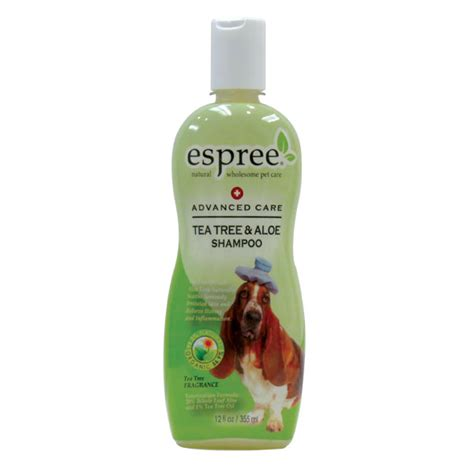 tea tree for dogs tea tree for dogs puppy