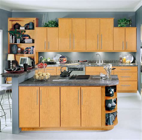 light colored kitchen cabinets design ideas