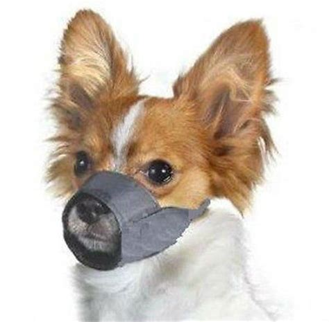muzzle for dogs grooming muzzle no barking biting x small size 0 new and used petpeoplesplace