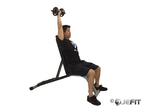 Dumbbell Chair Exercises by Dumbbell One Arm Seated Arnold Press Exercise Database