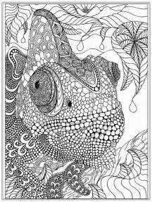 pictures to color for adults printable iguana coloring pages realistic coloring