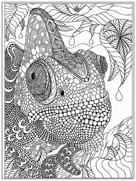 free online coloring pages for adults animals printable iguana adult coloring pages realistic coloring