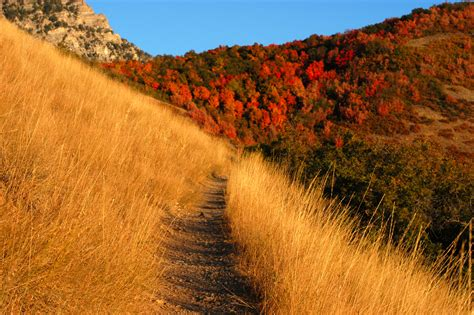 mountain trailhead file autumn mountain trail jpg wikimedia commons