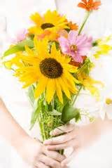 floral preservative cut flowers flower and flower food on pinterest
