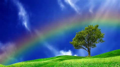what is the real color of the sky real rainbows in the sky hd wallpaper background images