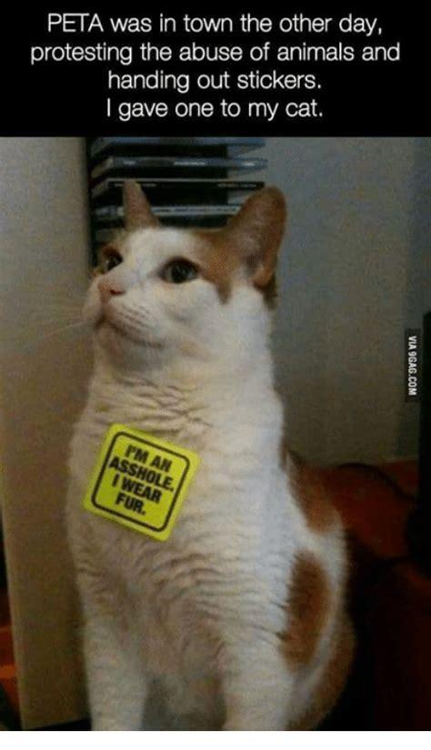 Peta Memes - 25 best memes about peta peta memes