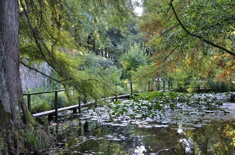 giardino botanico di orto botanico di lucca luoghi italianbotanicaltrips