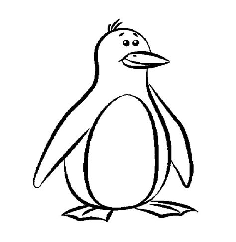 Coloring Page For Penguin | penguin template animal templates free premium templates