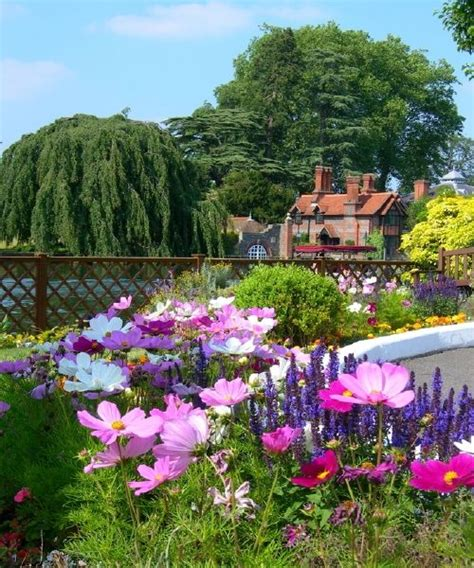 pretty english garden pictures   images