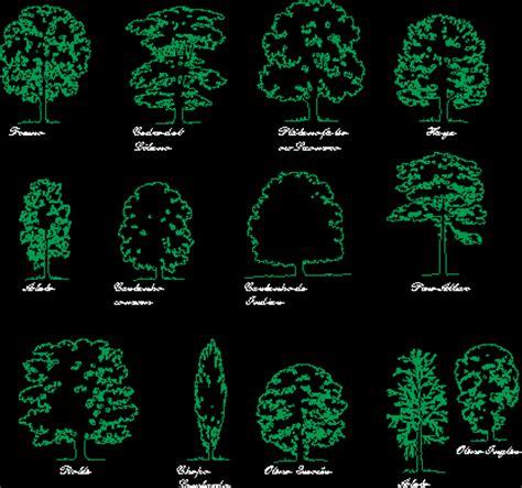 european trees european trees in autocad drawing bibliocad