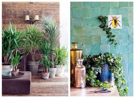 Planten In Huis Trends by Groen Wonen Planten Bloemen Trend