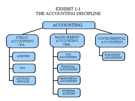 Eccounting Information Systems 1 management accounting chapter 1
