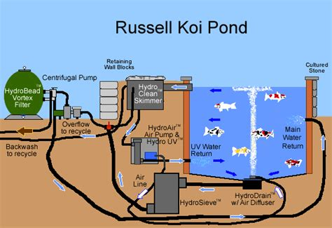 Garden Pond Skimmer by Koi Ponds Everything You Need To Know About Koi Ponds